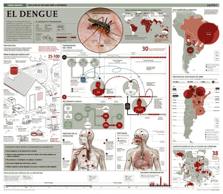 090830lamina_dengue
