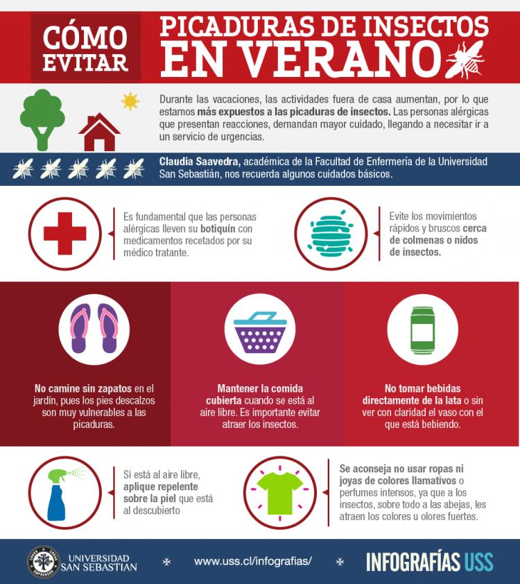 infografia-picaduras-b-021