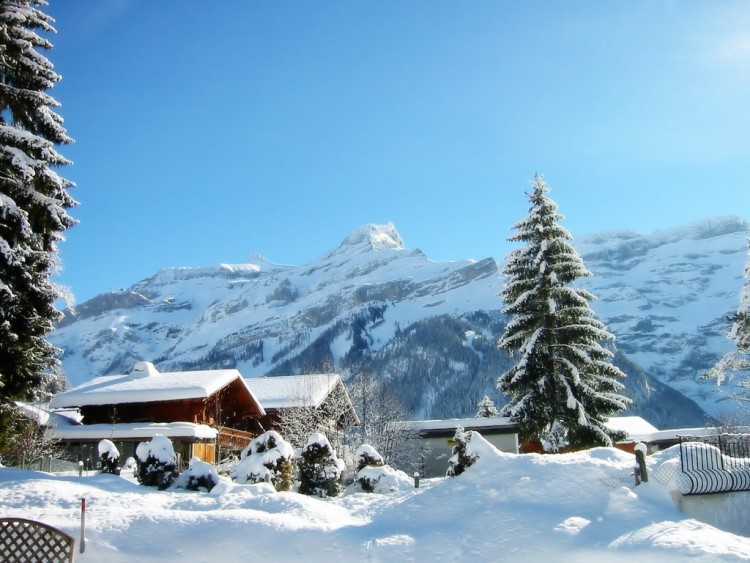 frio_invierno-1024x768