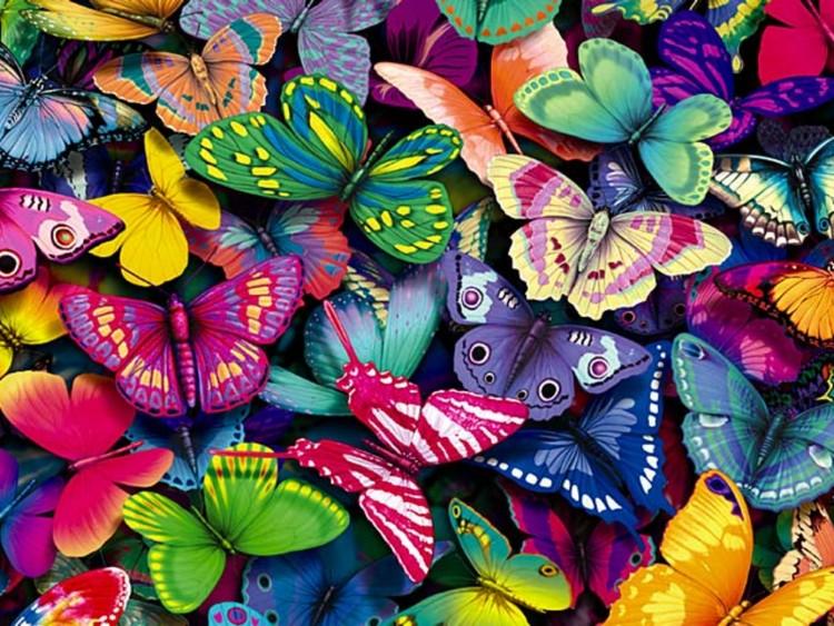 Originales postales con mariposas para protector de for Protectores de escritorio gratis