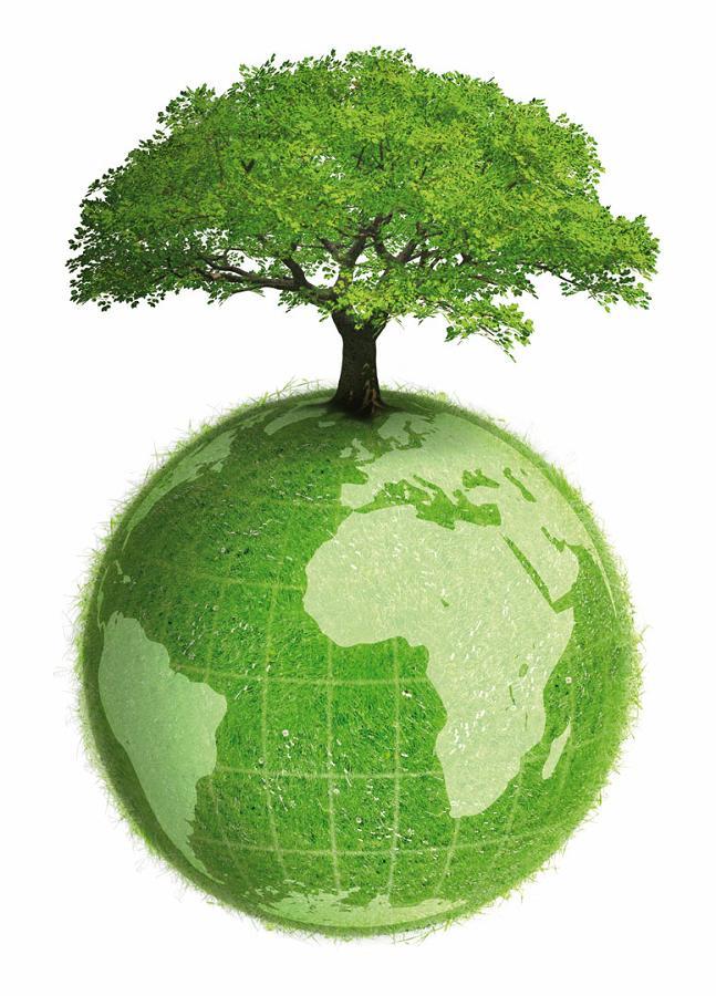 img_que_es_el_dia_mundial_del_medio_ambiente_y_como_celebrarlo_6940_orig