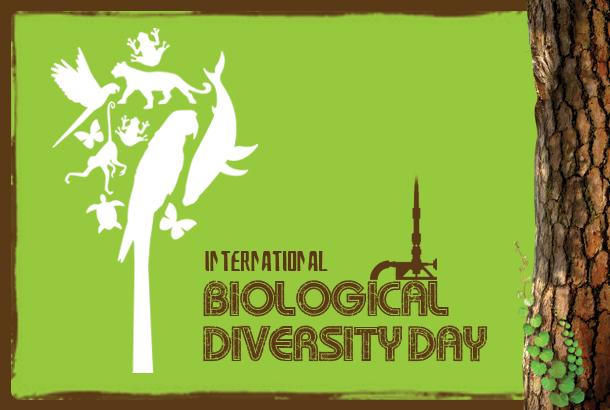 biological-diversity-day