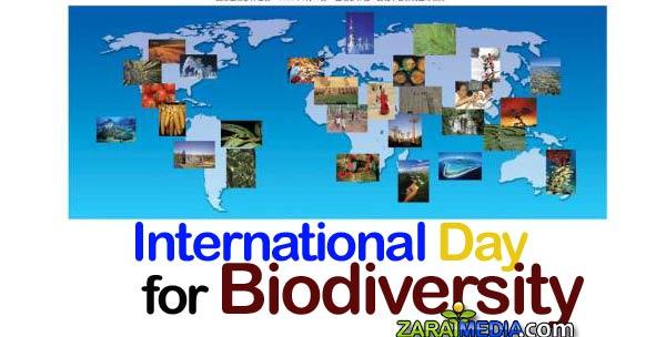 day-for-biodiversity
