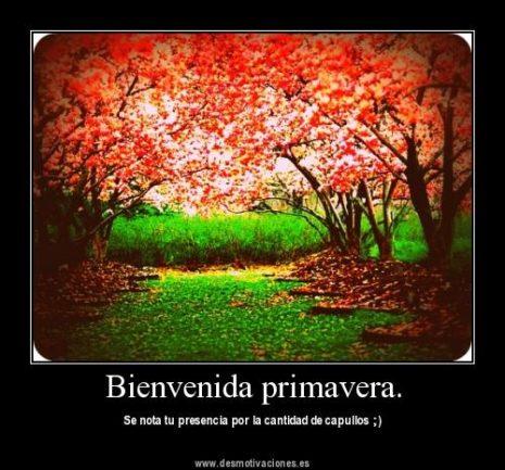 BienvenidaPrimavera18
