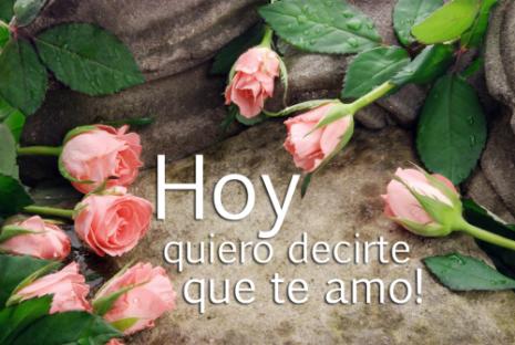DecirTeQuiero16