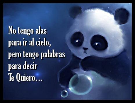 DecirTeQuiero5
