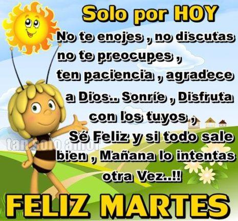 felizmartes6