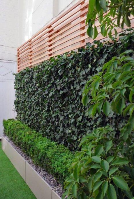 jardines peque os y verticales imagenes ideas e