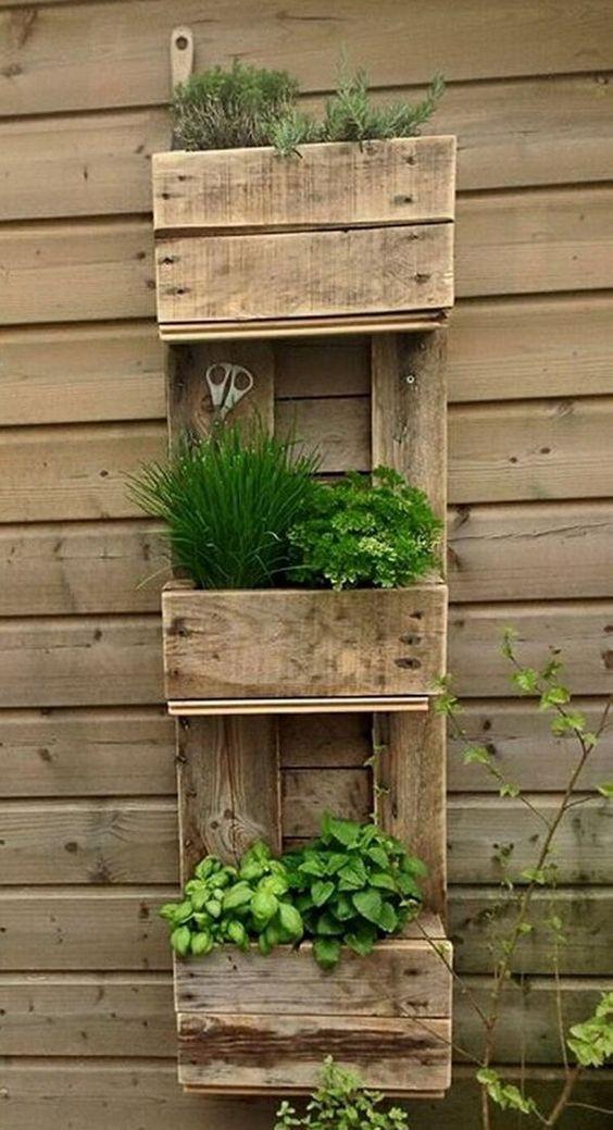 Jardines peque os y verticales imagenes ideas e for Jardin vertical en casa
