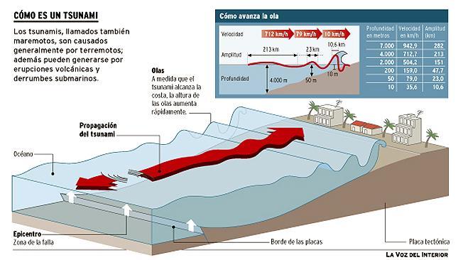 info_tsunami