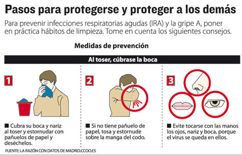 Infografia-gripe_LRZIMA20120623_0016_11