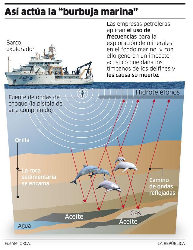 infografia-s01