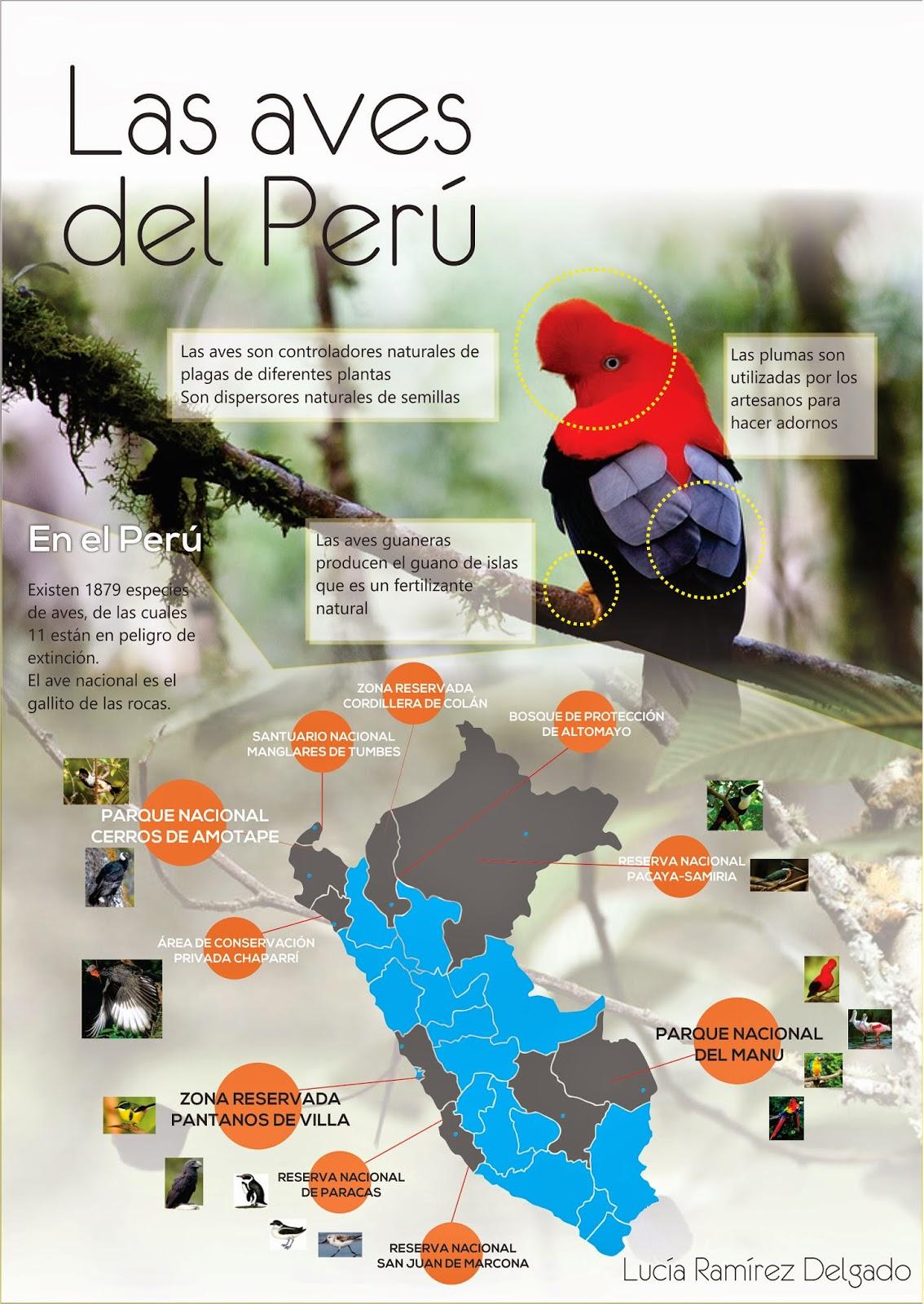 2 Ramirez Delgado Aves del Perú 1 (1)