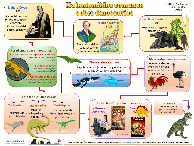 Infografia-Malentendidos-comunes-sobre-dinosaurios-WEB