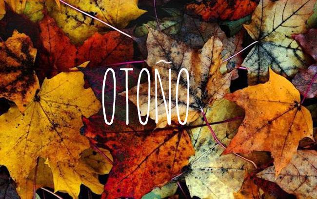otono-escandinavo-09