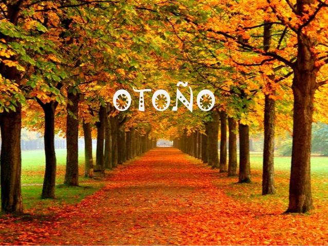 otonoc3b1o-con-buen-feng-hui