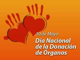 30-de-mayo-dia-de-la-donacion-de-organos-2_noticia_404 - copia