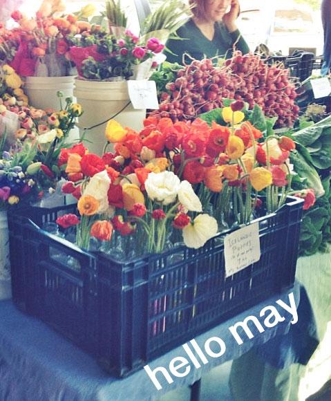 Hello-May (1)