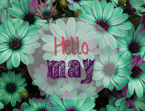 Hello-May-How-are-my-planes