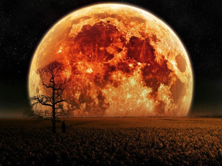 Luna-De-Sangre (1)