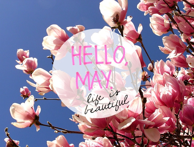 hello-may-pinterest