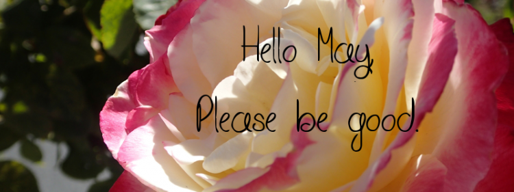hello-may-please-be-good-4