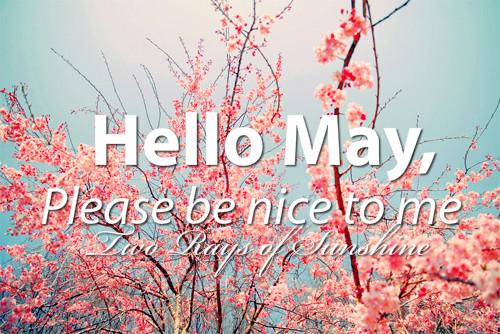 hello-may-please-nice-me-Favim.com-699533
