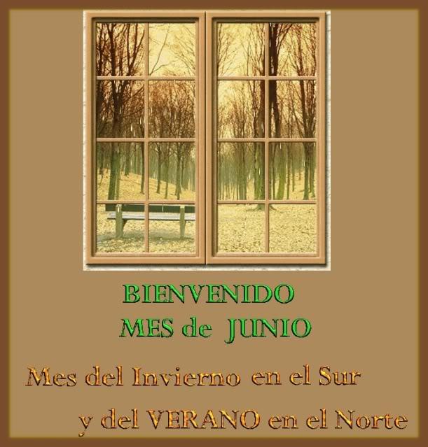 JUNIO (1)