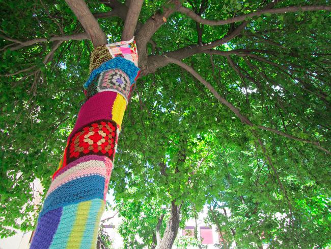 arbol-yarn-bombing
