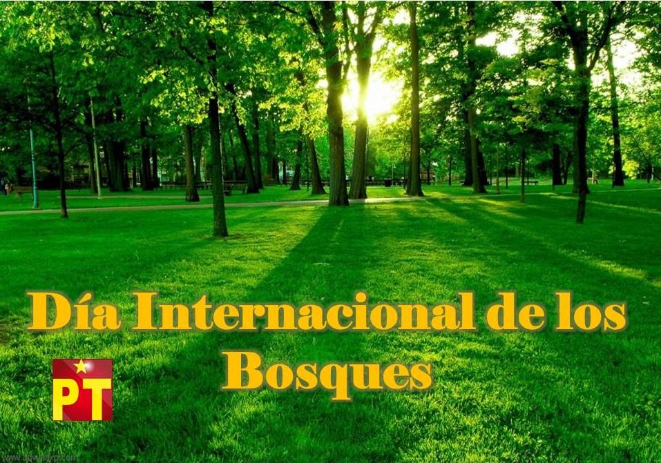 21-DE-MARZO-2015-DÍA-INTERNACIONAL-DE-LOS-BOSQUES1