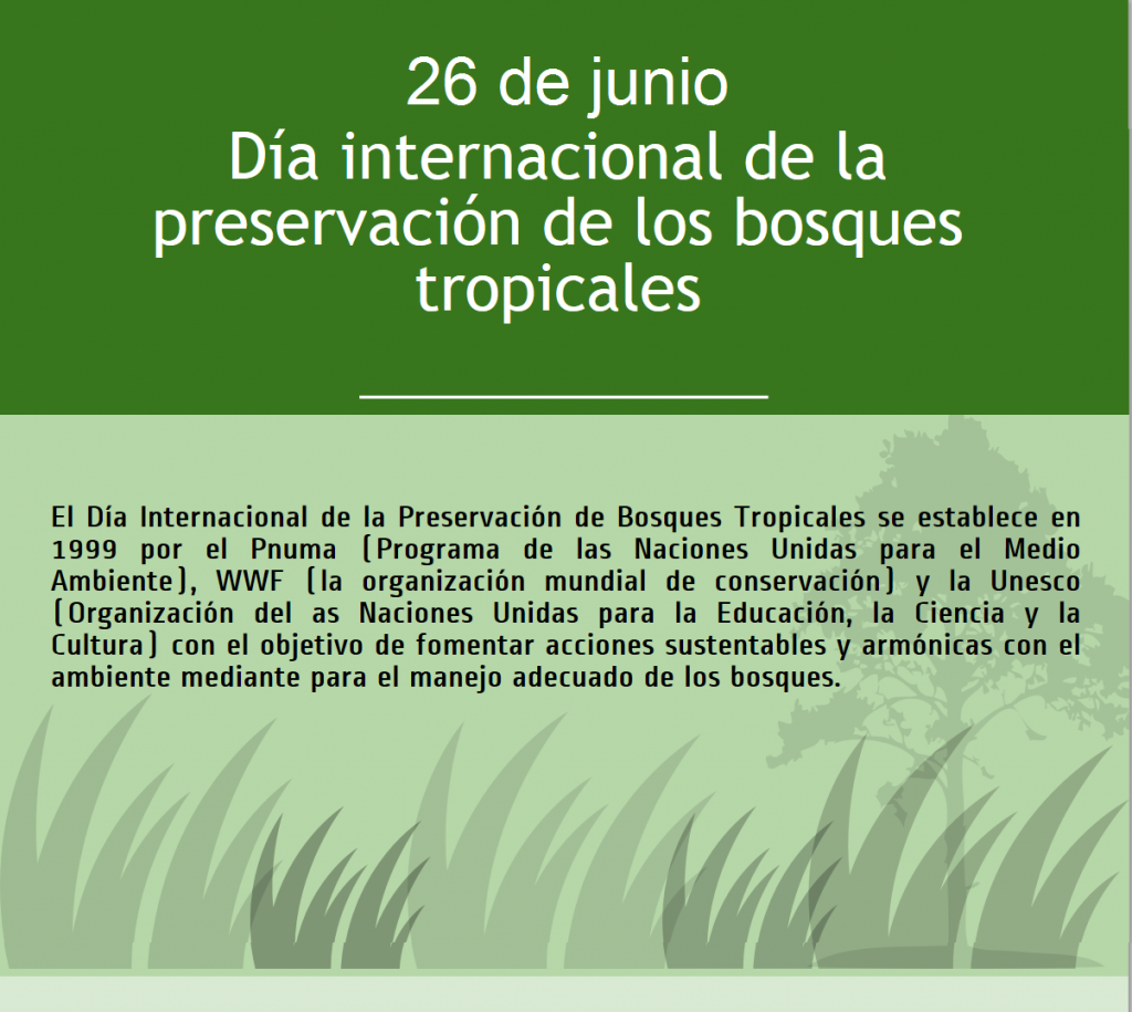 bosques-tropicales-e1403812590441-1024x915