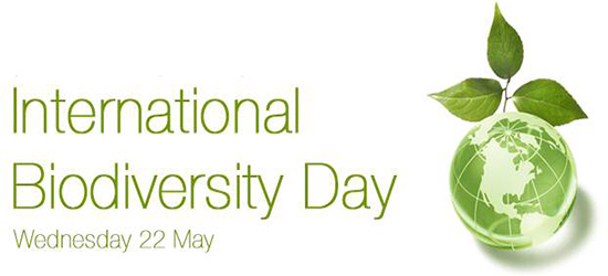 Biodiversity-Day-22-May
