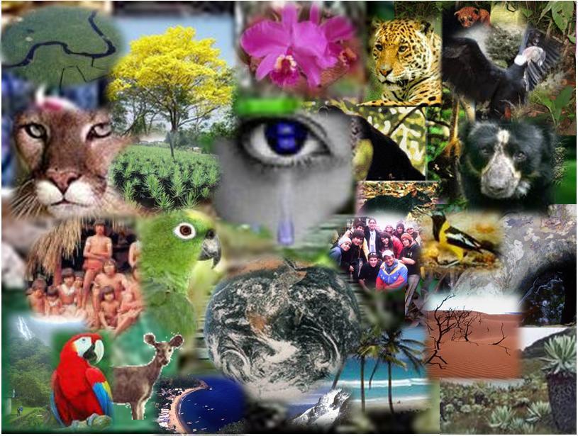 biodiversidad (1)