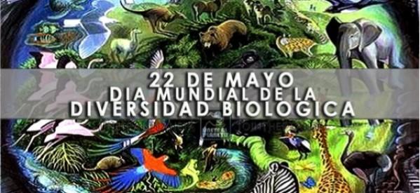 biodiversidadDia-Internacional-de-la-Diversidad-biológica