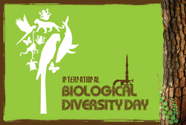 biological-diversity-day