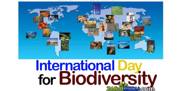 day-for-biodiversity