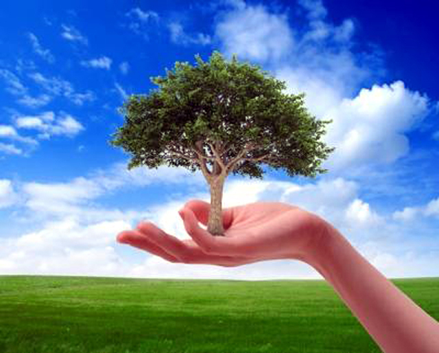 world-environment-day-wallpaper-21