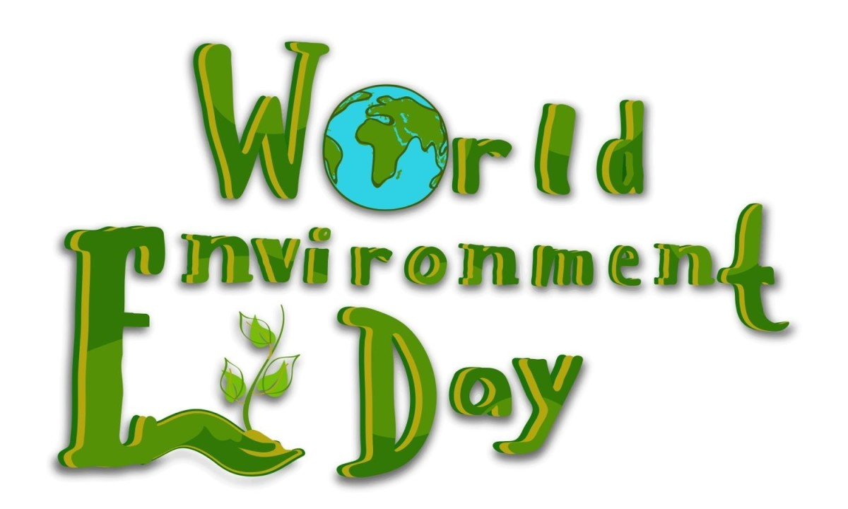 world_environment_day_chicago_