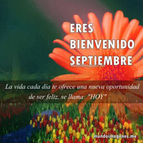 BienvenidaPrimavera38