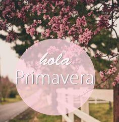 HolaPrimavera6