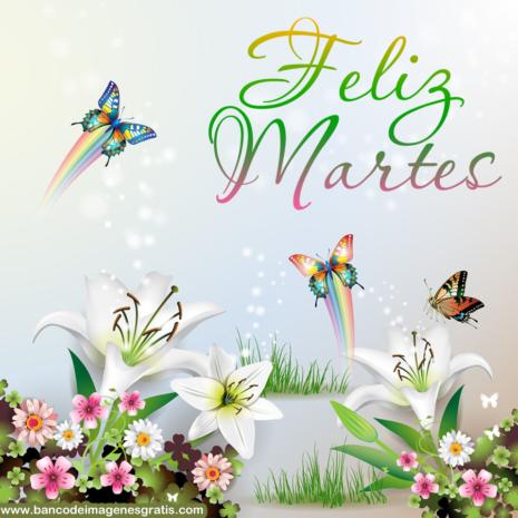 holamartes36