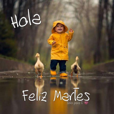 holamartes7