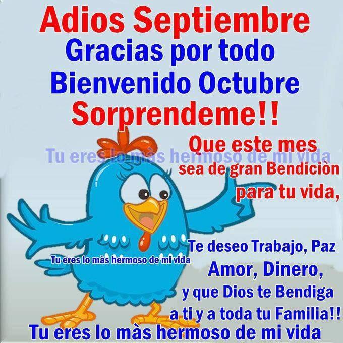 Imagenes Lindas Y Bellas Frases Para Darle La Bienvenida A Octubre