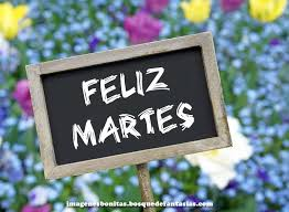 felizmartes23
