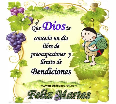felizmartes33