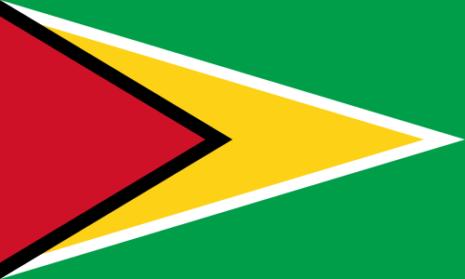 bandera roja blanca y negra con dos estrellas verdes