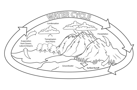 Ciclo Del Agua Imágenes Maquetas Y Dibujos Para Colorear
