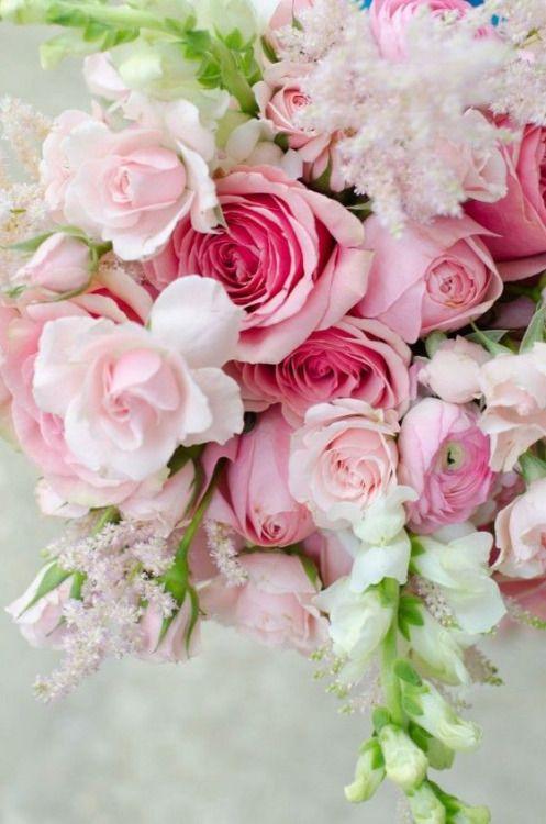 Imágenes De Flores Fotos Bonitas De Flores Para Descargar